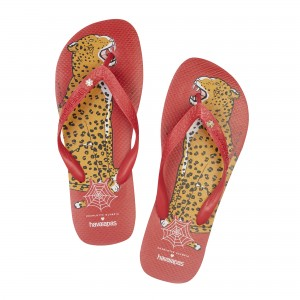 CO_SPECPRO_BRUCEHAVAIANA_RED 2